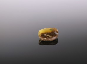 Natural amber brooch